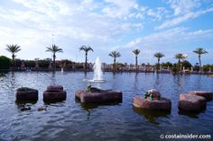 Nations Garden in Torrevieja city centre is a peaceful haven amongst the hustle and bustle and its large lake is home to thousands of Koi carp. Torrevieja Spain, Koi Carp, Picture Video, Parks, Things To Do, Holidays, City, Garden, Nature