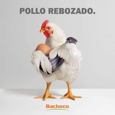 Some Fun, Rooster, Humor, Animals, Advertising, Cheer, Animaux, Animal, Ha Ha