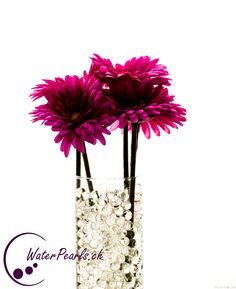 Die eleganten, durchsichtigen Waterpearls mit violetten Schnittblumen