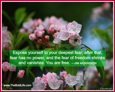 Expose yourself to your biggest fear and watch it lose it's power.