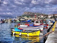 Kalk Bay Harbour - Cape Town