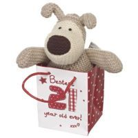 Small Boofle Sitting in a Bag wth message: Bestest 21 Year Old Ever! xxx