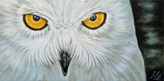 "Saatchi Online Artist: Nicole Zeug; Acrylic, Painting ""Snow Owl"""