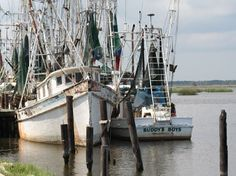 Shrimp boats at rest at Apalachicola, Florida.  Visit a historic fishing community and stay on the beach.  Find places to stay here: http://collinsvacationrentals.com/