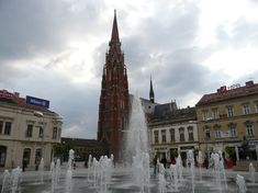 CLS's June 2019 Culture and Language Course explores undiscovered Slavonia and Baranja. Based in the one week trip discovers the highlights of the region and includes twice daily Croatian lessons for all levels - beginner, intermediate and advanced. Croatian Language, Language School, Highlights, June, Culture, Explore, Highlight, Hair Highlights, Exploring