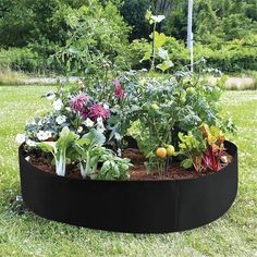 Idea soil environment for organic and no-till garden systems save water and fertilizers requires no tools and can be put up in a matter of minutes Plants For Raised Beds, Raised Garden Beds, Small Raised Garden Ideas, Vegetable Boxes, Vegetable Garden, Garden Soil, Garden Bags, Tomato Garden, Herb Garden