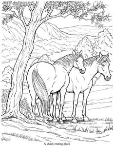 Dover Sampler - Dover Coloring Box - Horses