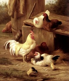 Edgar Hunt (1876-1953) — Chickens And Chicks, 1909 (861x1009)