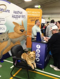 Petsecure territory manager Tory chats with expo-goers as Charlie the dog looks on. — at Vancouver Island Pet Expo.