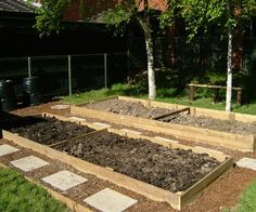 Allotment Planning Tips for Gardeners
