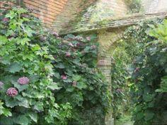 Video Great Dixter Garden Kent Sussex Engeland
