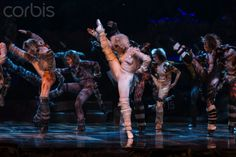 Cats the Musical Media Call ahead of opening night at the Capitol Theatre in Sydney