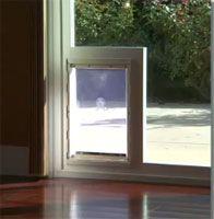 Dog door in the glass