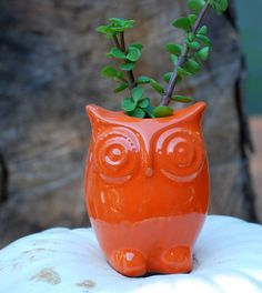 Cute! Wish it came with the plant too. OWL planter in orange autumn decor by claylicious on Etsy, $29.00