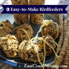 Make Your Own Bird Feeders