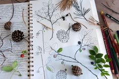 This Artist Makes Her Studio Deep in the Forest | Doodlers Anonymous