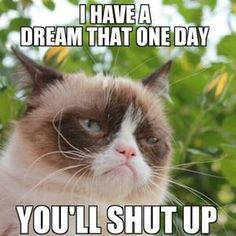 Martin Luther King I Have a Dream: Martin Luther King and Grumpy Cat had a dream that one day you'll shut up Cute Animal Memes, Funny Animal Quotes, Animal Jokes, Cute Funny Animals, Hilarious Quotes, Grumpy Cat Quotes, Funny Grumpy Cat Memes, Funny Memes, Funny Pics