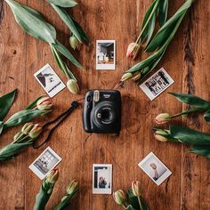instax HQ (UK & Ireland) (@instaxhq) • Instagram-Fotos und -Videos Instant Print Camera, Instax Camera, Camera Photography, Card Sizes, Tulips, Ireland, Gray, Mini, Floral