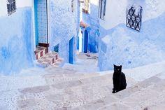青一色の綺麗な都市『シャウエン』モロッコにある不思議な町並み