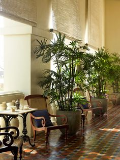 Amangalla Gallery - Luxury Resort in Galle, Sri Lanka - Aman