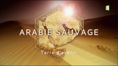 Arabie sauvage - Terre d'avenir - http://cpasbien.pl/arabie-sauvage-terre-davenir/