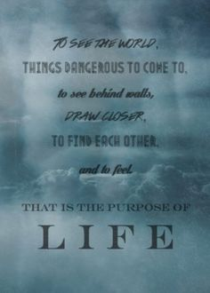 Secret Life Of Walter Mitty Quotes Best The Secret Life Of Walter Mitty  One Of My Very Favorite Quotes