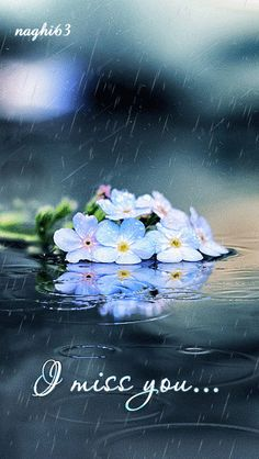 I miss you Sista! Miss U My Love, Missing You Love, Miss You Too, Always Love You, Purple Flowers Wallpaper, Beautiful Flowers Wallpapers, Beautiful Gif, Good Morning Rain, Good Morning Quotes