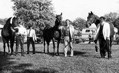 Kelso, John Henry and Forego at Belmont 1983.
