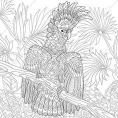 Cacatoès de perroquet oiseau Coloriage adulte. Zentangle Doodle de Pages à colorier pour les adultes. Illustration numérique. Télécharger tirage instantanés.