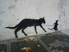 Le cauchemar du chat