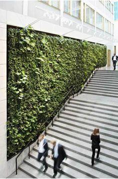 Die grüne Wand oder oranische Elemente in die Arch - Jardin Vertical Fachada Landscape And Urbanism, Landscape Walls, Urban Landscape, Landscape Design, Garden Design, Vertical Green Wall, Green Facade, Green Roofs, Green Architecture