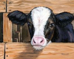 Cows Holstein Cow Cow Art Print Print of Original Painting Calf with Fence by Dottie Dracos calf cattle farm animals art for kids 8 Farm Animals Kids farm animals kids - There are many explanations why you would have to . Tier Wallpaper, Animal Wallpaper, Animal Paintings, Animal Drawings, Paintings Of Cows, Drawing Animals, Cow Drawing, Image Deco, Cow Pictures