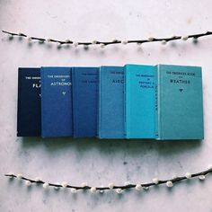 """""""The sky grew darker painted blue on blue one stroke at a time into deeper and deeper shades of night."""" Haruki Murakami  A wee collection of blue Observer Books for #colorcolourloversBLUE"""