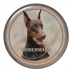 Dobermann 3D sticker - #dobermann #doberman #reddoberman #reddobermann