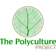 The Polyculture Project is all about developing and promoting practices that provide nutritious affordable food while enhancing biodiversity. We experiment with various regenerative/permaculture practices and publish our records with aim to supply solid empirical data for the community.