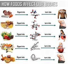 The Healthy Boy: Junk Food Vs Healthy Food
