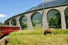 The Brusio spiral viaduct is a single track nine-arched stone spiral railway viaduct located in Brusio, in the Canton of Graubünden, Switzerland. Like most spiral tracks, the Brusio spiral viaduct was built to allow trains to gain elevation in a relatively short distance. CLICK for FULL ARTICLE