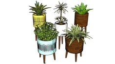 PLANT-24 -2012 - 3D Warehouse