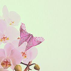 Origami by zizy ziegler http://instagram.com/p/pEFCCeQQgk/