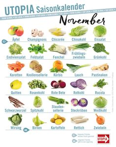 Saisonkalender: Das gibt's im November – Utopia.de Seasonal Calendar: That's in November – Utopia. Healthy Diet Plans, Nutrition Plans, Diet Meal Plans, Healthy Foods To Eat, Healthy Life, Healthy Eating, Healthy Recipes, Nutrition Education, Nutritional Yeast Recipes