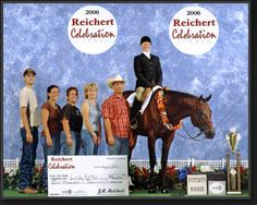 Best New Artist, hand AQHA Hunter Under Saddle Stallion by Reserve Congress Champion Art I Sweet and out of Perfectly Riva Congress Top. Hunter Under Saddle, Horse Pictures, Horse Stuff, Saddles, Show Horses, New Artists, Good News, Champion, Baseball Cards