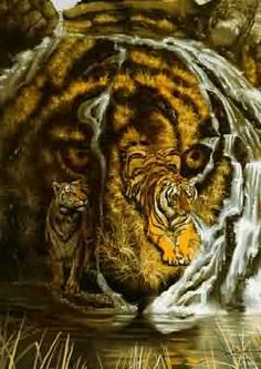 Take a look at this amazing Another Hidden Tiger Illusion illusion. Browse and enjoy our huge collection of optical illusions and mind-bending images and videos. Optical Illusion Paintings, Optical Illusions Pictures, Illusion Pictures, Cool Illusions, Art Optical, Hidden Art, Hidden Images, Hidden Pictures, Perceptual Illusions