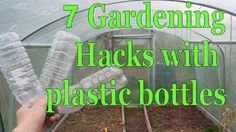 7 Gardening Hacks with Plastic Bottles - Simple, Free and Effective!