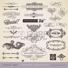 calligraphic design elements and page decoration - lots of useful elements to embellish your layout  Фото со стока - 8753466