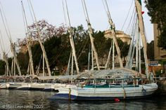 Egyptian felucca sailboats docked along the Nile River