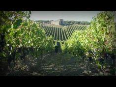 la nostra #storia nel canale #youtube di vigne Mastrodomenico