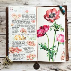 Art Journal Pages Kunstjournal Inspiration, Sketchbook Inspiration, Bullet Journal Inspiration, A Level Art Sketchbook, Arte Sketchbook, Art Journal Pages, Art Journals, Art Doodle, Nature Journal