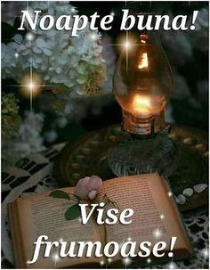 Light Bulb, Night, Decor, Bom Dia, Beautiful Flowers, Nice Asses, Decoration, Lightbulbs, Electric Light