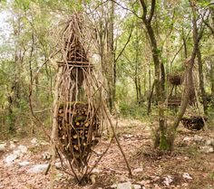 A Year in a French Forest: Sculpture No 10.Forest Sculptor Spencer Byles.