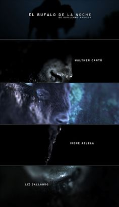 5 stills from the opening title sequence of El Bufalo De La Noche (2007), a Mexican drama. Titles by renowned Dutch motion studio Onesize